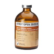 Streptopen 20/20 100ml